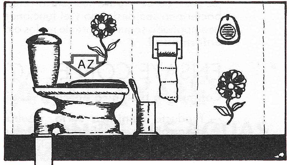 CÓMO DESATASCAR EL WC. ACTIZYME, ASESORÍA Y CONSULTORÍA DE INGENIERÍA DE AGUAS.